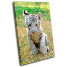 Baby White Tiger Animals - 13-1228(00B)-SG32-PO